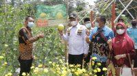 Wabub Fauzi Resmikan AgroWisata Mulyorejo Farm