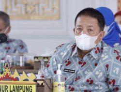 Gubernur Arinal Hadiri Puncak Peringatan Harganas Ke-28